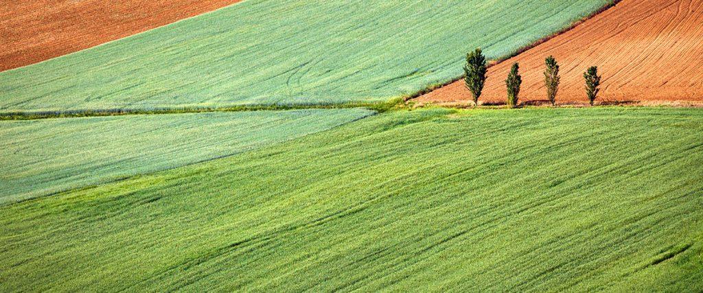 Torna ad Arezzo AgrieTour la fiera dell'agriturismo